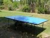 Ping Pong....