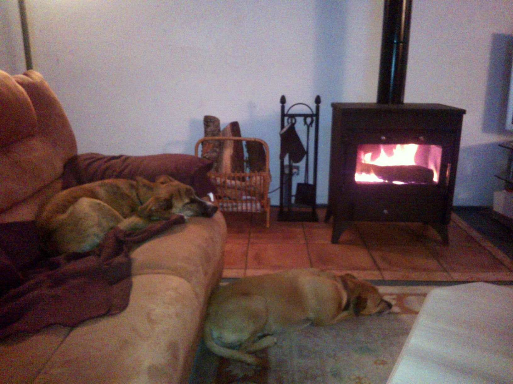 Think they are happy the fire is now working